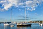 Boats in Oak Bluffs Harbor on Summer Day, Martha's Vineyard, Oak Bluffs, MA