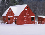 Red Barn and Fresh Winter Snow, Berkshire Mountains, Alford, MA
