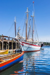 "Colorful Skiffs and the Schooner ""Ardelle"" Docked at Maritime Gloucester, Inner Harbor, Gloucester Harbor, Gloucester, MA"