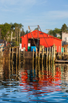 Red Bait House at Kent's Wharf in Early Morning Light with Reflections in Burnt Coat Harbor, Swans Island, ME