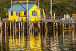Yellow and Blue Lobster Shack with Reflections in Early Morning Light, Burnt Coat Harbor, Swans Island, ME