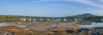 Panoramic View of Blue Hill Harbor in Early Morning, Blue Hill, ME