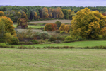 Fall Foliage in Rural Farmlands, Brooklyn, CT