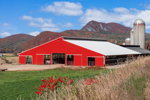 Red Cow Barn with Silos in Fall with Mountains in Background, Pawlet, VT
