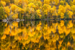 Colorful Fall Foliage Reflecting in Upper Cascade Lake, Adirondack Park, Keene, NY