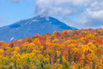 Colorful Fall Foliage on Mountains in High Peaks Wilderness Area, Whiteface Mountain in Background, Adirondack Park near Lake Placid, North Elba, NY