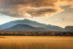 Early Evening Light over Field of Grasses with Mountains in Background, High Peaks Wilderness Area, Adirondack Park, North Elba, NY
