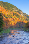 Colorful Foliage on Mountainside Reflecting in West Branch Ausable River, Sentinel Range Wilderness, Adirondack Park, North Elba, NY
