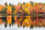 Colorful Fall Foliage Reflecting in Mill Pond, Grafton Lakes State Park, Grafton, NY