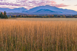 Late Evening Light over Field of Grasses with Mountains in Background, High Peaks Wilderness Area, Adirondack Park, North Elba, NY