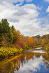 Beaverkill River in Fall, Catskill Mountains, Catskill Park, near Hamlet of Craigle Clair, Rockland, NY