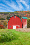 Gambrel-style Red Barn with Silo in Early Fall, Andover, NY