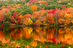 Autumn Foliage Reflecting in Calm Waters of South Meadow Pond, Clinton, MA