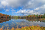 Reflections at Harvard Pond in Late Fall, Petersham, MA