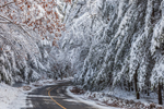 Country Road after Heavy Snowfall, Royalston, MA