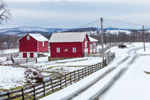 Red Barns along Country Road on Rural Farm in Winter, Taconic Mountains Region, Hamlet of Ancramdale, Ancram, NY