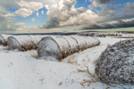Hay Bales on Rural Farmland in Winter, Northeast, NY