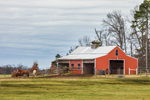 Red Barn and Horses in Pasture, St. Francis County, near Colt, AR