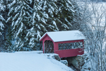 Little Red Covered Bridge with Snow-covered Spruce Trees after Snowfall, Wilmington, VT