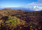 Hualalai Volcano Summit and Mauna Kea, Big Island, Hawaii