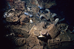 Gasmasks, Shipwrecks of Truk Lagoon, Micronesia