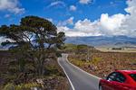 Mauna Loa road scenic, Big Island, Hawaii