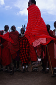 Men doing jumping dance, Masai People, Serengeti, Tanzania, Africa