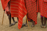 Feet and colorful dress, Masai People, Serengeti, Tanzania, Africa