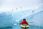 Kayakers observe Adelie Penguins (Pygoscelis adeliae) on Iceberg, Weddell Sea, Antarctica