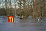 McDonald's sign and parking lot flooded by the Willamette River, Oregon City, Oregon, USA, 20,049.