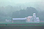 Dairy farm on a hot hazy, and humid June morning in the Finger Lakes region near Cato, upstate New York, USA, 8,598.