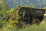 Freight car abandoned to the vines in the old ghost town of Thurmond, New River Gorge National River, West Virginia, USA, September, 2007_WV_0123