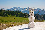 Summer snowman on a remnant snowfield, built by hikers in the Van Trump Park area of Mt. Rainier National Park, Washington, USA, August, 2007_WA_1784