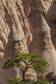 Tent-shaped hoodoos viewed from the Slot Canyon Trail at Kasha-Katuwe Tent Rocks National Monument in New Mexico, USA