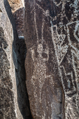 Example of rock art depicting animal created long ago by Jornada Mogollon people at Three Rivers Petroglyph Site in the northern Chihuahuan Desert, New Mexico, USA