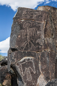 Exquisite example of rock art depicting bird and mammal figures created long ago by Jornada Mogollon people at Three Rivers Petroglyph Site in the northern Chihuahuan Desert, New Mexico, USA