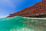 Snorkeling in the Gulf of Mexico just outside the moat around Fort Jefferson, on Garden Key in Dry Tortugas National Park, Florida, USA