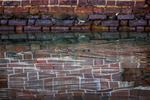American Crocodile, Crocodylus acutus, swimming in the moat of Fort Jefferson with reflections of the reddish-orange bricks of the fort, on Garden Key in Dry Tortugas National Park, Florida, USA