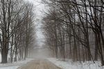 Icy country road through the forest during a January thaw in central Michigan, USA