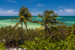 Looking out toward the Atlantic Ocean, with palm trees in the wind, in Bahia Honda State Park, Florida Keys, USA