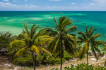 Looking out toward the Atlantic Ocean and a small island, with palm trees in the wind, in Bahia Honda State Park, Florida Keys, USA