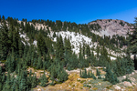 Scattered trees and meadows above the Bumpass Hell hydrothermal basin in Lassen Volcanic National Park, California, USA