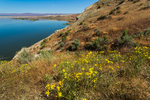 Bluff along the trail to White Bluffs along the Columbia River in Hanford Reach National Monument, Columbia River Basin, Washington State, USA