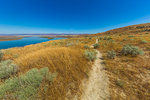 Trail leading to White Bluffs in Hanford Reach National Monument, Columbia River Basin, Washington State, USA