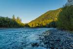 Morning along the Hoh River at Happy Four Camp, in the Hoh Rain Forest along the Hoh River Trail in Olympic National Park, Washington State, USA