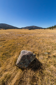 San Antonio Creek running through the vast grasslands of Valles Caldera National Preserve, a National Park Service preserve in northern New Mexico, USA