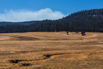 Vast grasslands in Valles Caldera National Preserve, a preserve run by the National Park Service, with smoke rising from a prescribed burn in the distance, northern New Mexico, USA