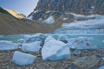 Icebergs broken off from Cavell Glacier (across the pond) stranded along frozen Cavell Pond below Mount Edith Cavell on a cold autumn morning, Jasper National Park, Alberta, Canada, September, 2008_CN_5622
