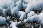 Snow melting near the end of Matanuska Glacier, northeast of Anchorage, Alaska, USA