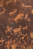 Animal petroglyphs made by Ute People at Newspaper Rock in Indian Creek National Monument, formerly part of Bears Ears National Monument, southern Utah, USA